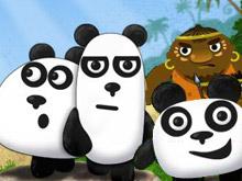 دببة الباندا 2
